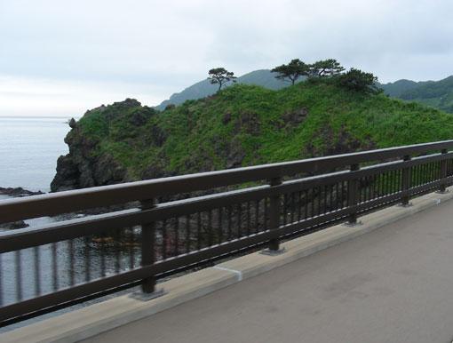 anamanozaki01.jpg