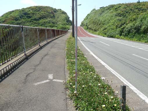 anouzaki-4.jpg