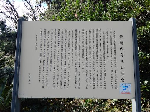 arasaki2-3.jpg