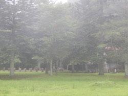 bakokutaiji032.jpg