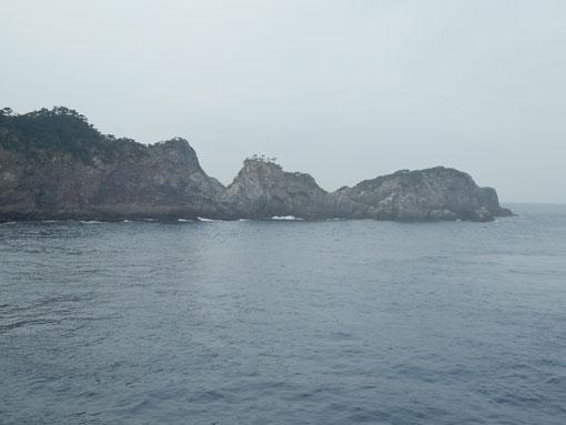 cyohorinohana04.jpg