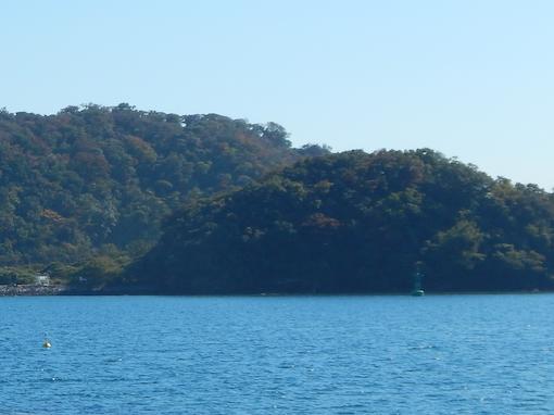 daichinohana-4.jpg