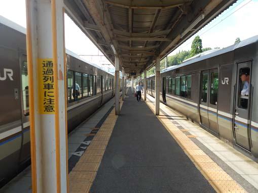 fujigahana-1.jpg