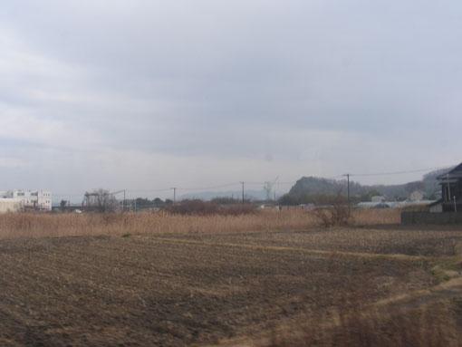 hanazurasaki08.jpg