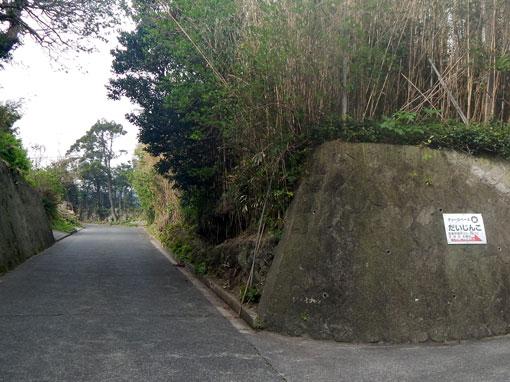 hikimawashihana15.jpg