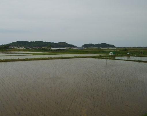 hodenosakigaha08.jpg