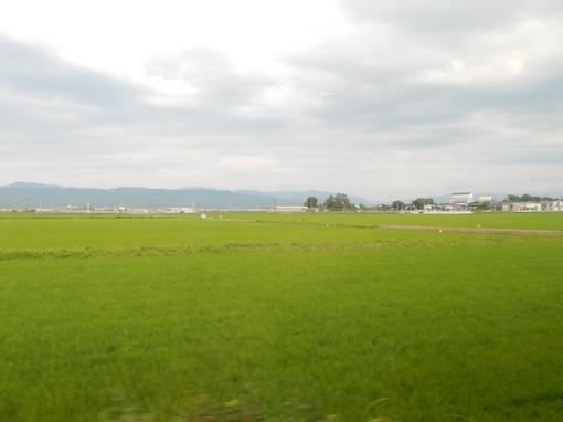 inaho-5.jpg