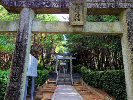 isozakihana05.jpg