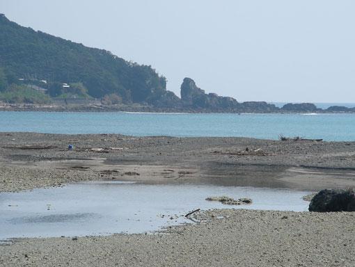 isozakiyamami02.jpg