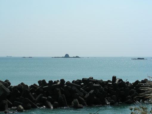 isozakiyamami04.jpg