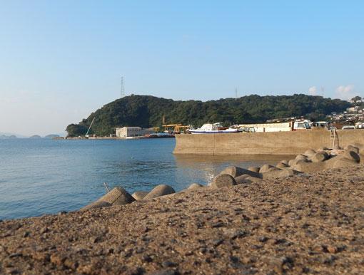 iwasakihana08.jpg