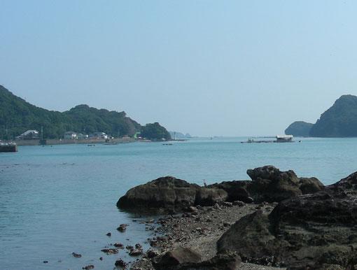 iwayazaki07.jpg