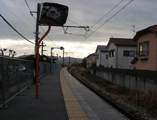 jyogahanakobu11.jpg