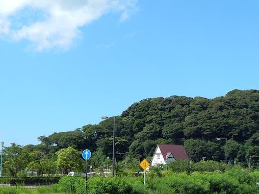 kamomegasaki-11.jpg