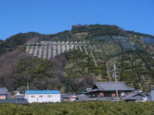 kanayamazaki06.jpg