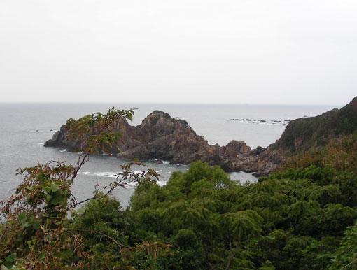 koishinohana01.jpg