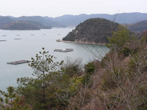 kozanohana05.jpg