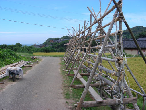 kurosaki04.jpg