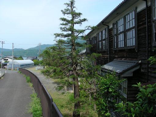 kurosakianou12.jpg