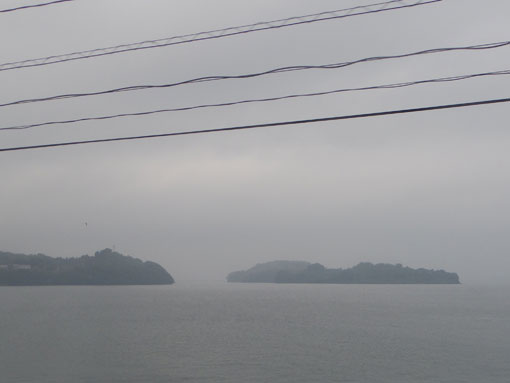 kurosakihana02.jpg