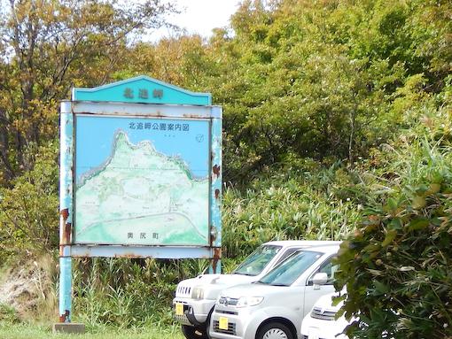 kuzurehana-5.jpg
