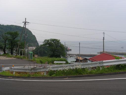 kozaki18.jpg