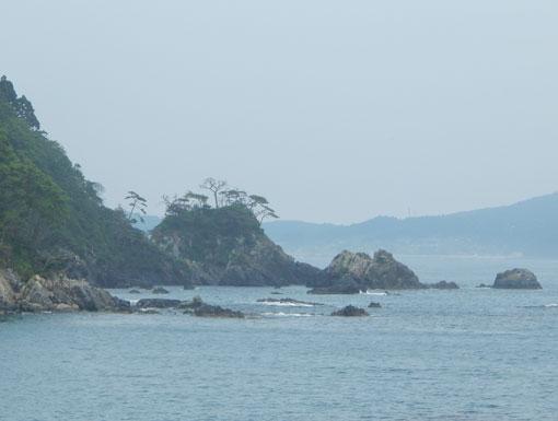 matsugahana01-05db4.jpg