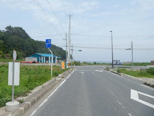 matsugahana12.jpg