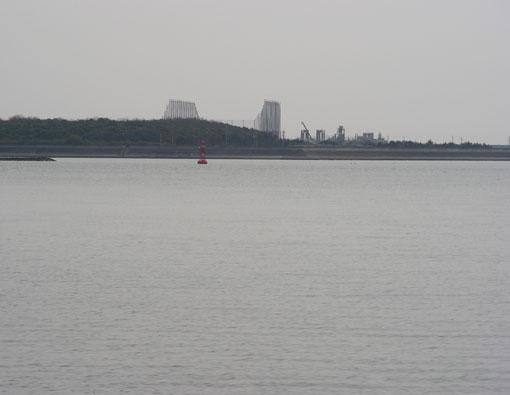 matsunohana02.jpg