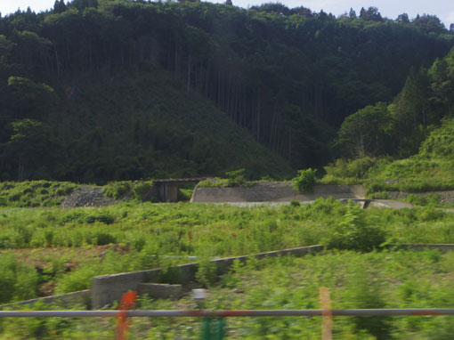 matsuzaki13.jpg