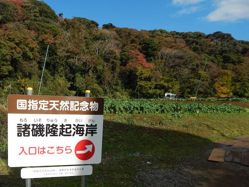 moroisozakiryuki-1.jpg