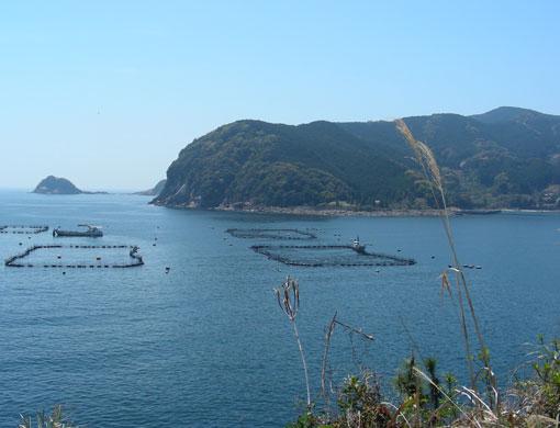 murozaki08.jpg