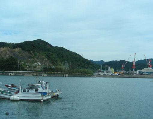 nagainohana03.jpg