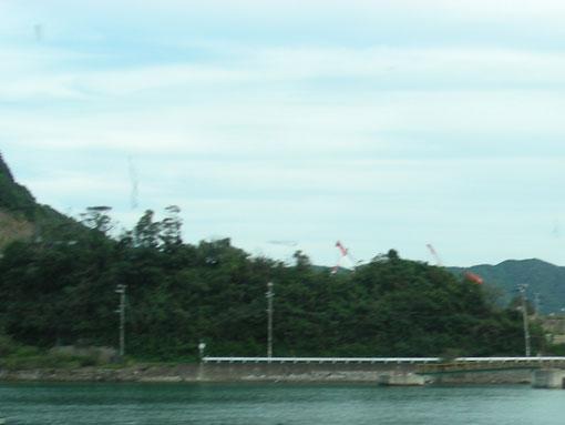 nagainohana06.jpg