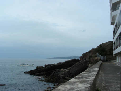 noroshinohana08.jpg
