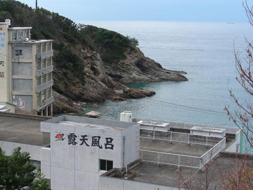 noroshinohana11.jpg