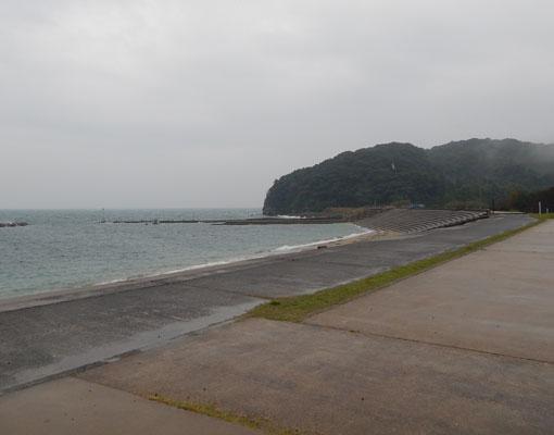 ohosehana01.jpg