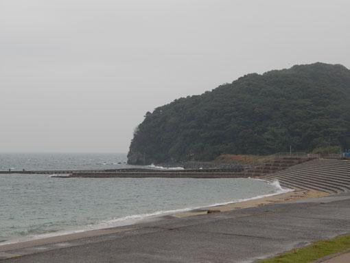 ohosehana02.jpg