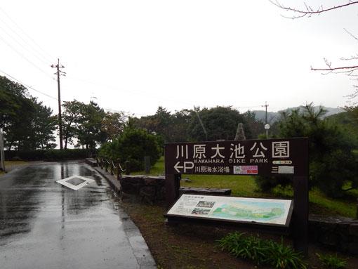 ohosehana09.jpg