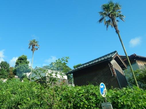 okazaki-10.jpg
