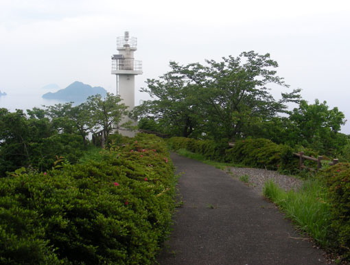 oshimawashihana01.jpg