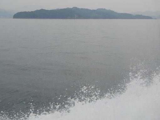 sakinonohana04.jpg