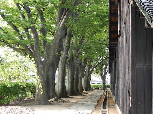 sankyosoko-7.jpg
