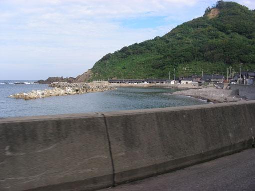 saruyamam04.jpg