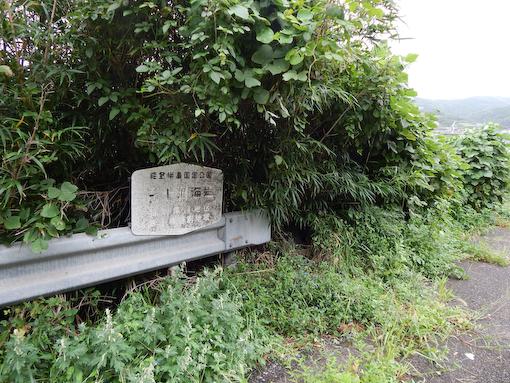 saruyamamisaki-2.jpg