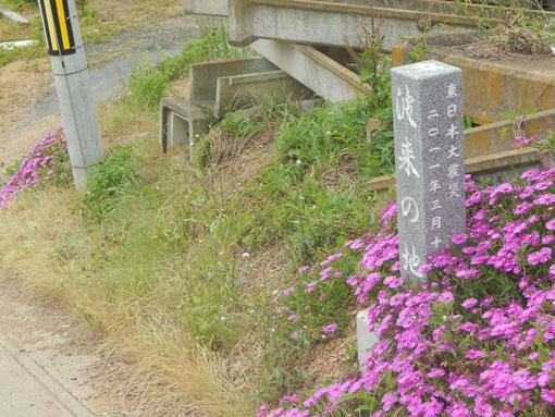 sendaizaki02.jpg