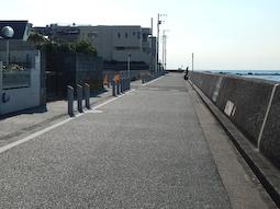 shibajyu-6.jpg