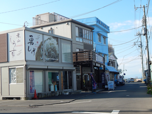 shibazaki-3.jpg