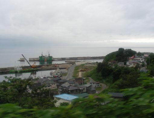 shiraiwazaki07.jpg