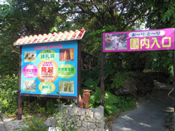syounyudo111.jpg